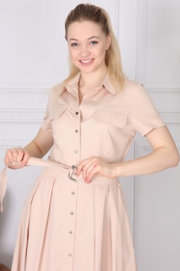 Beige Basic Collar Dress