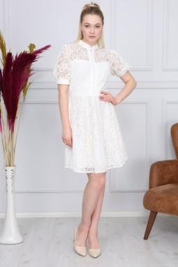 White Color Lace Dress