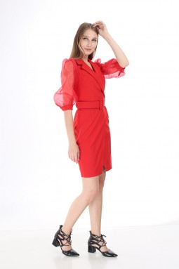 Red Sleeve Tulle Dress